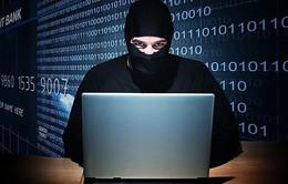 Australia nỗ lực ngăn chặn nội dung khủng bố trên Internet