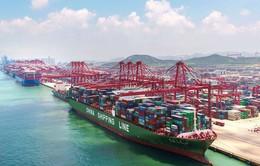 Tổng kim ngạch thương mại của Trung Quốc giảm mạnh