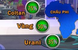 Nhật Bản tăng cường đầu tư vào châu Phi