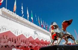 Trước thềm Liên hoan phim quốc tế Venice lần thứ 76