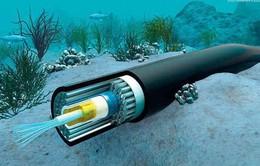 Mỹ phản đối cáp quang biển nối với Hong Kong vì lo ngại an ninh