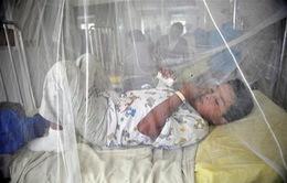 Dịch sốt xuất huyết lây lan mạnh tại Trung Mỹ