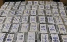 Hải quan Đức thu giữ gần 5 tấn cocaine