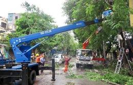 Hơn 294 nghìn khách hàng bị cắt điện do bão số 3