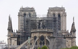 Paris phòng chống nguy cơ ô nhiễm chì