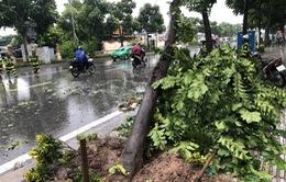 15 người thiệt mạng và mất tích, 32 nhà bị đổ sập sau bão số 3