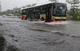 Chùm ảnh: Hà Nội có nhiều điểm ngập nước, cây đổ ảnh hưởng đến giao thông