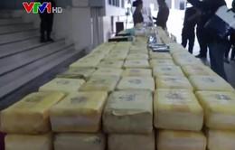 Buôn lậu ma túy tại Tam giác Vàng diễn biến phức tạp