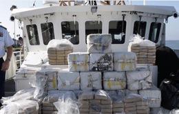 Mỹ bắt được lượng ma túy đủ khiến 14 triệu người tử vong