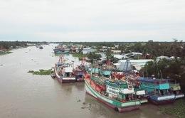 Gần 1000 tàu cá nằm bờ tại Kiên Giang