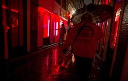 Làn sóng phản đối quyết định đóng cửa phố đèn đỏ tại Amsterdam, Hà Lan