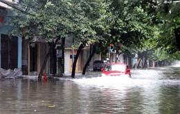 Mưa bão gây thiệt hại cho Sơn La