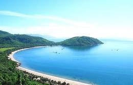 Sẽ cấm du khách chạy xe tay ga trên bán đảo Sơn Trà
