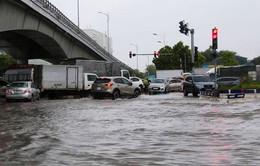 """""""Tháng 8 có 1 - 2 cơn bão và áp thấp nhiệt đới trên Biển Đông"""""""