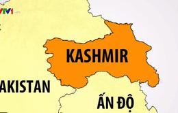 Ấn Độ bãi bỏ điều khoản trao quyền tự trị cho Kashmir