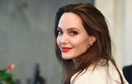 Angelina Jolie: Không gì quyến rũ bằng một người phụ nữ độc lập