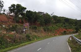 Khẩn trương xử lý các trạm dừng chân trái phép trên đèo Đại Ninh