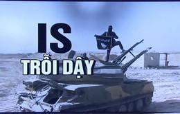IS đang củng cố lực lượng hồi sinh ở Syria và Iraq