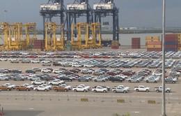 Rà soát tình trạng nhập khẩu ô tô tăng đột biến