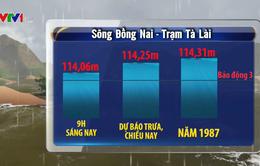 Cảnh báo lũ khẩn cấp trên sông Đồng Nai