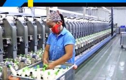 Nhân dân tệ giảm giá, DN xuất khẩu sang Trung Quốc tìm cách ứng phó