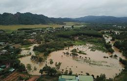Lâm Đồng: Sạt lở sau mưa lớn ở đèo Bảo Lộc, giao thông ùn tắc nghiêm trọng