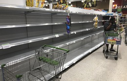 Người dân Florida, Mỹ dự trữ nhu yếu phẩm phòng bão Dorian