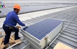 Trung Quốc dốc nhiều nguồn lực vào kinh tế xanh