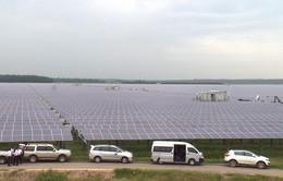Biến vùng bán ngập hồ Dầu Tiếng thành nơi phát điện