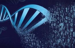 Israel lưu trữ thông tin dưới dạng mã ADN