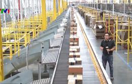 Khám phá công việc quản lý các robot trong kho hàng Amazon