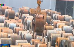Hoa Sen phản đối đề xuất tăng thuế nhập khẩu thép của Bộ Tài chính
