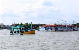 Cà Mau công khai hạn ngạch giấy phép khai thác thủy sản