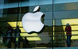 Apple gặp khó trong việc chuyển dịch sản xuất về Mỹ