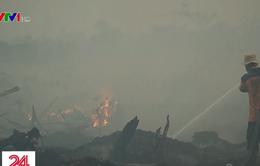 Cháy rừng dữ dội tại Indonesia, nhiều nước Đông Nam Á bị ảnh hưởng