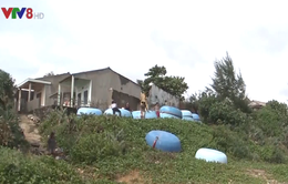 Người dân Quảng Ngãi thấp thỏm lo âu mỗi mùa mưa bão về