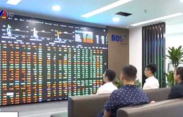 VN-Index tăng điểm trở lại sau 7 phiên điều chỉnh giảm