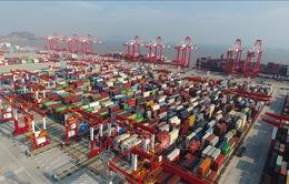 Mỹ hoãn tăng thuế với 250 tỷ USD hàng hóa Trung Quốc