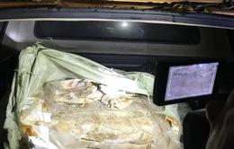 Thu giữ 400kg nầm lợn nhập lậu bốc mùi hôi thối