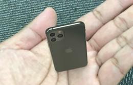 """Cách """"trên tay"""" sớm iPhone 11, iPhone 11 Pro bằng công nghệ AR"""