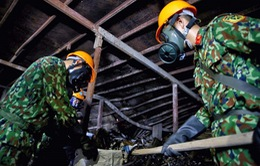 """Vụ cháy Công ty Rạng Đông: """"Tiến độ thực hiện tẩy độc hiện trường vụ cháy càng nhanh càng tốt"""""""