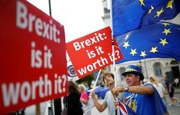 Cảnh báo tác động của Brexit không thỏa thuận