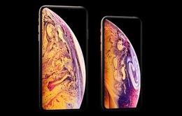 Apple mất ưu đãi độc quyền từ Samsung do mảng kinh doanh iPhone XS max không khả quan