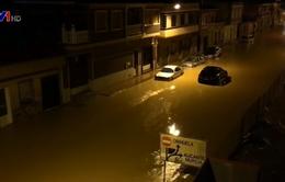 Mưa lũ gây thiệt hại lớn tại Tây Ban Nha