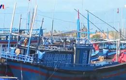 Ngư dân mong muốn nhanh được cải hoán tàu cá