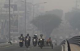 Indonesia đóng cửa nhiều trường học, sân bay do khói mù từ cháy rừng
