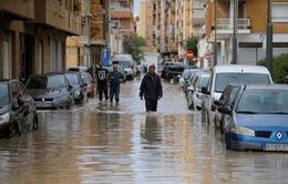 Tây Ban Nha: Hàng nghìn người phải sơ tán vì lũ lụt