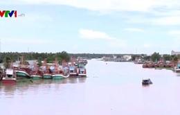 Kiên Giang: Hàng nghìn chủ tàu cá có nguy cơ đổ nợ