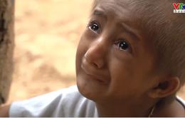 VTV Đặc biệt tháng 9: Chuyện chưa biết về cậu bé tí hon K'Rể