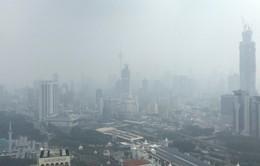 Indonesia và Malaysia đóng cửa hàng trăm trường học vì khói bụi cháy rừng